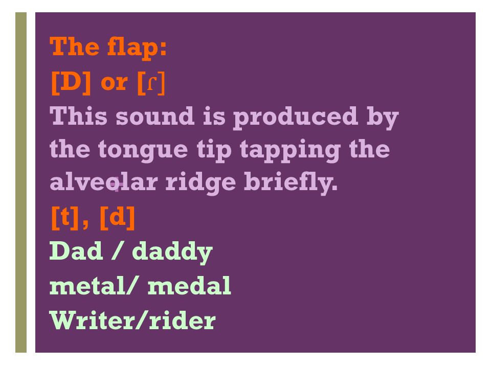 The flap: [D] or [ɾ] This sound is produced by the tongue tip tapping the alveolar ridge briefly.
